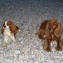Loti & Michelle