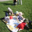 Mojca, Jaša, Karin, Eva, Gašper, Filip in pobegla Zarja