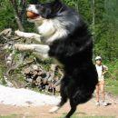 Za Akom (2002) - skok