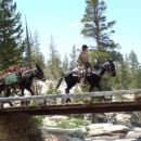 To Glen Aulin - Bridge over Tuolumne River