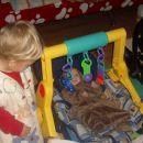 Loris ima novo igračko