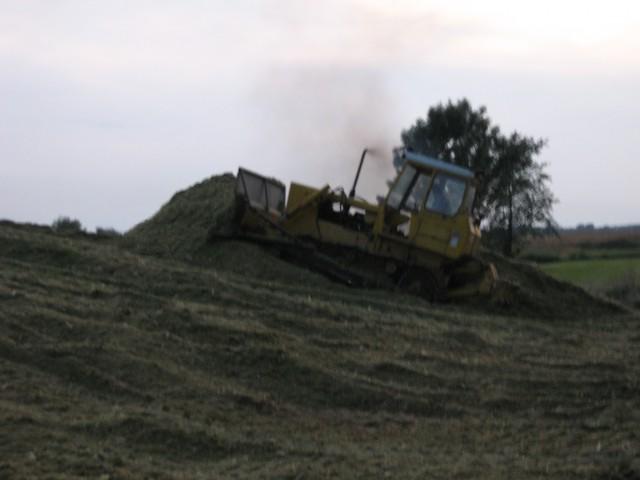 Siliranje 2008 - foto