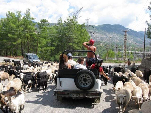 Turcija 2008 - foto