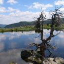 Kleka na jezeru