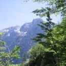 Razgled na Logarsko dolino
