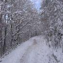 Svibno - zasnežena pot