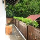 Naš balkon. Letos je poln 'sparagusov' in gorenjskih nageljnov ;)