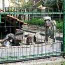 Čina, Čakra in Bistra (27 apr 2005)