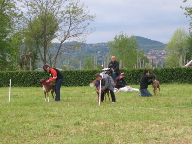 Coursing Lago di Garda 30 4 2006 - foto