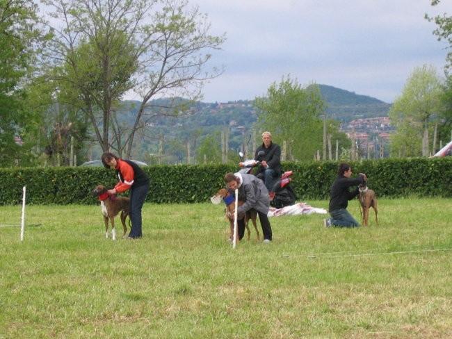 Coursing Lago di Garda 30 4 2006 - foto povečava