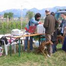 registracija udeležencev