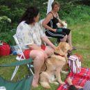 piknik SKH