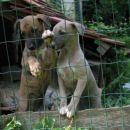 Elba & Edina, 15 jun 2007