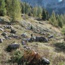 Ostanki prve v listinah omenjene planine na Bovskem.