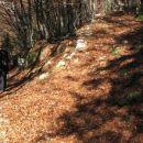 Razcep, ki sva ga gor grede spregledali (cveke). Sledi sprint v dolino!