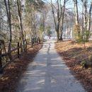 Pot proti Bohinjskemu jezeru