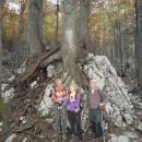 Korenine pred koreninami.