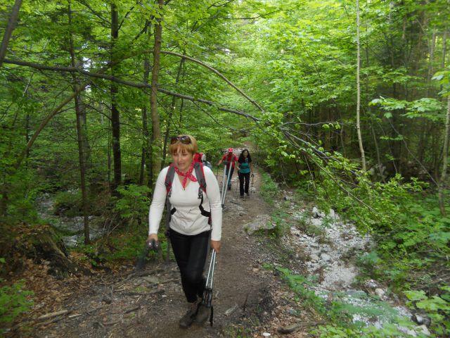 20130609 Planina-Golica-D.Baba-Dovje - foto
