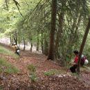 Spust poteka po strmi gozdni poti