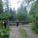 Zapora na gozdni cesti
