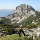 Pot proti Vrhu Hribaric (zadaj Ogradi)
