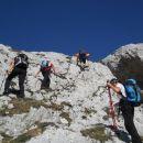 Pot proti Vrhu Hribaric