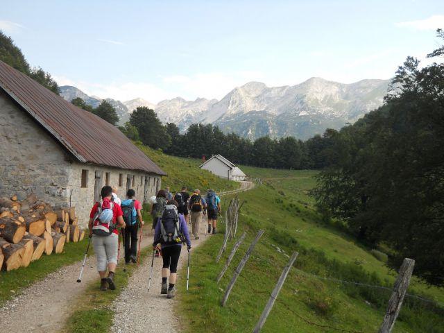 Začetek poti proti Koči na planini Razor
