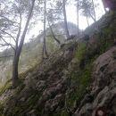 Pot proti Cojzovi koči na Kokrskem sedlu čez Taško