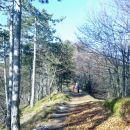 Pot na Tošč