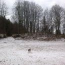 Uživanje na snegu :)