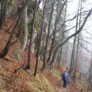Čez Borovnico nekaj zelo strmih predelov.