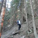 Strma pot skozi gozd