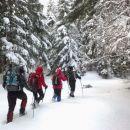 Pot zavije v gozd, kjer začnemo gaziti :)