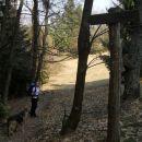 Spust proti Celjski koči po gozdni učni poti