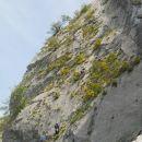 Tudi plezalci v steni so obdani z rožicami :)
