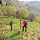 Smerokaz na planini Kal