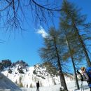 In odprejo se nam lepi razgledi nad Višarsko planino