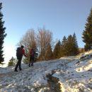 Pot proti Gojški planini