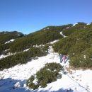 Pot na Vrh Korena