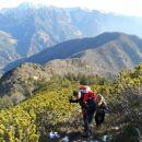 Pot na Cjanovco ter razgled na Javorjev vrh