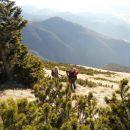 Pot na Cjanovco ter razgled na Potoško goro