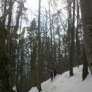 Spust proti Gozdu