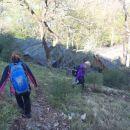 Spust z vrha proti arheološkemu najdišču.