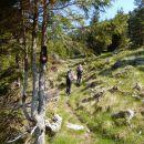 Pot proti planini Dolga njiva