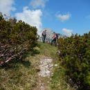 Pot na Mali Grintovec in prvi razgled na Storžič