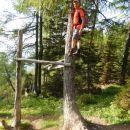 Tudi na drevo ob poti se da splezati :)
