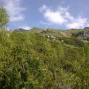 Razgled s poti na južna pobočja Viševnika