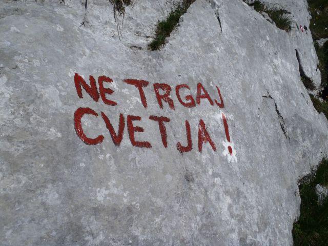 20150705 Sedm.Tičarici-Kopica Zelnarici Blato - foto