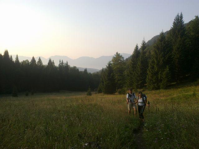 Pot čez Planino Spodnja Grintovica (1175m)