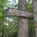 Mali sprehod na Uskovnico in še 4-urni večerni Avsenikov festival.